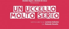 Un Uccello Molto Serio  |  Direct2Brain